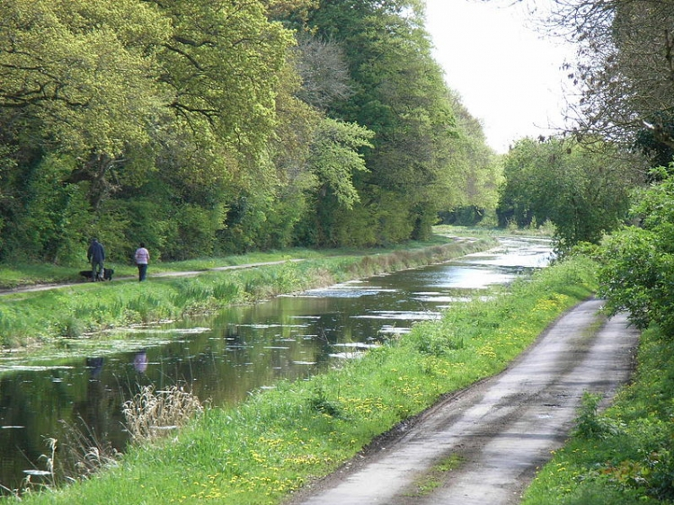 Royal Canal ad est di D'Arcy's Bridge - Contea di Westmeath