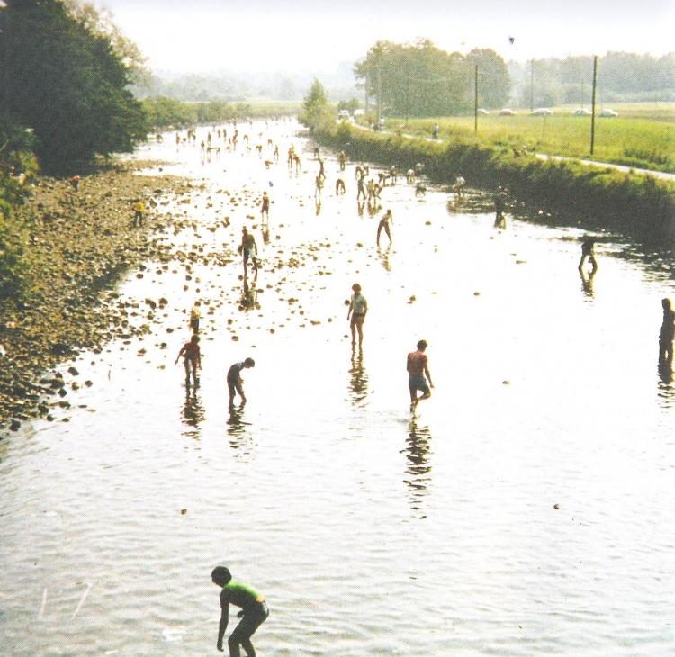 La Sucia – pesca miracolosa durante l'asciutta del Naviglio Grande a Robecchetto con Induno