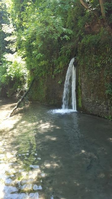 Una cascata d'acqua nel Naviglio d Paderno - maggio 2016